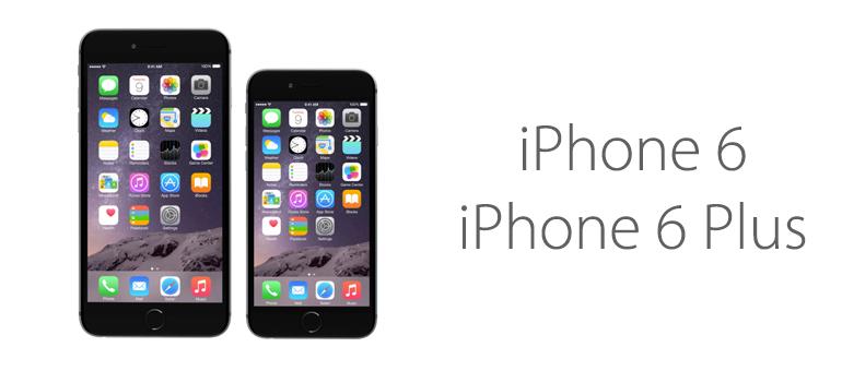Características de iPhone 6 y iPhone 6 Plus