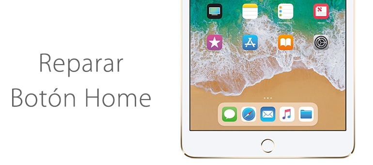 Arreglamos el botón home de tu iPad Mini