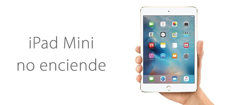 Cambiar batería de iPad Mini si no carga al conectarlo