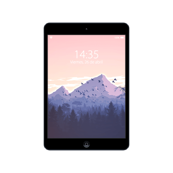Cambiar Pantalla iPad Mini 2